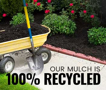 When to Mulch in Ohio