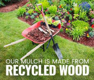 When to replace mulch